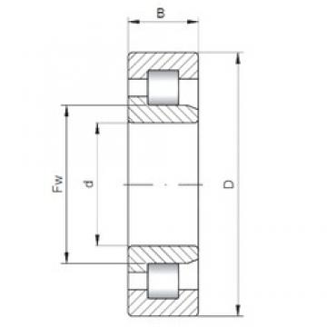 70 mm x 125 mm x 31 mm  ISO NJ2214 cylindrical roller bearings