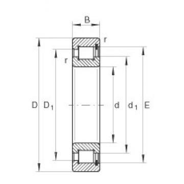 70 mm x 125 mm x 31 mm  INA SL182214 cylindrical roller bearings